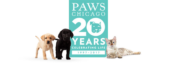 PAWS Chicago Landing Page